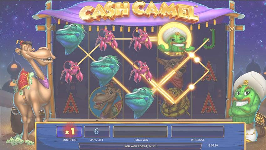 cash camel slot gratis