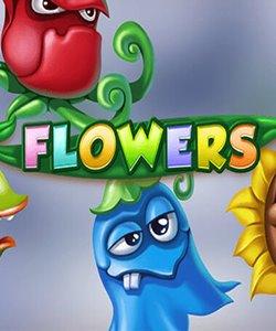 flowers gratis