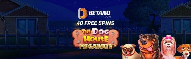 40 free spins pentru The Dog House Megaways
