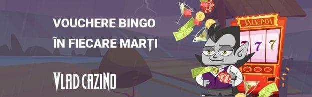 vouchere bingo vlad cazino